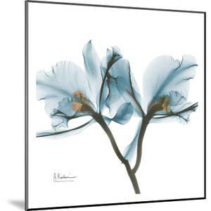 Orchids in Blue by Albert Koetsier