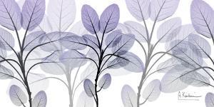 Phenomenal Blooms 1 by Albert Koetsier