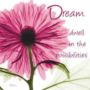 Pink Chrysanthemum Dream 2 by Albert Koetsier