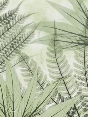 Prehistoric Awakening by Albert Koetsier