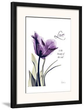 Purple Tulip, Love by Albert Koetsier