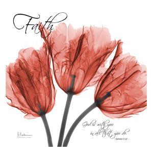 Royal Red Tulip, Faith by Albert Koetsier