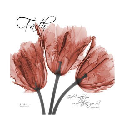 Royal Red Tulip, Faith