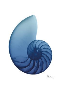 Scenic Water Snail 2 by Albert Koetsier