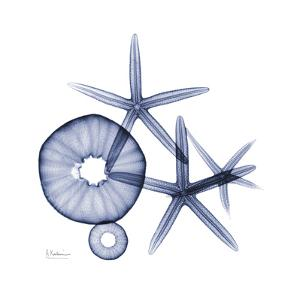 Sea Life in Blue II by Albert Koetsier