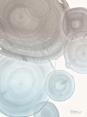 Sea Mist Tree Rings by Albert Koetsier