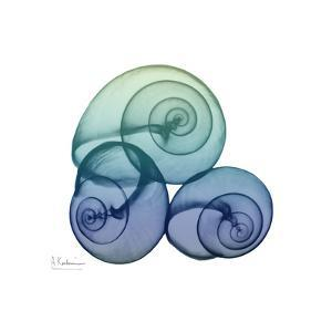 Sea Sky Snails by Albert Koetsier