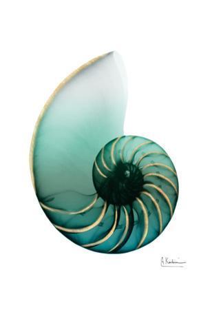 Shimmering Snail 4 by Albert Koetsier