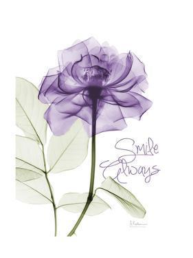 Smile Always Rose by Albert Koetsier