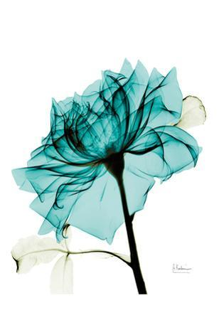 Teal Spirit Rose 2 by Albert Koetsier