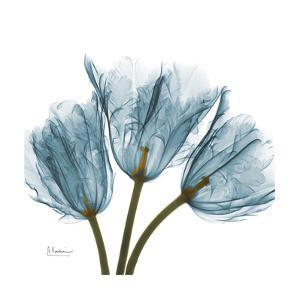 Tulips in Blue by Albert Koetsier