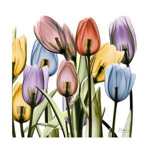 Tulipscape by Albert Koetsier