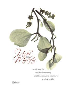 Xmas Mistletoe by Albert Koetsier