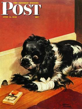 """""""Butch and Mousetrap,"""" Saturday Evening Post Cover, June 8, 1946 by Albert Staehle"""