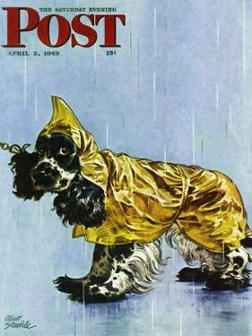 """Butch in Raingear,"" Saturday Evening Post Cover, April 2, 1949 by Albert Staehle"