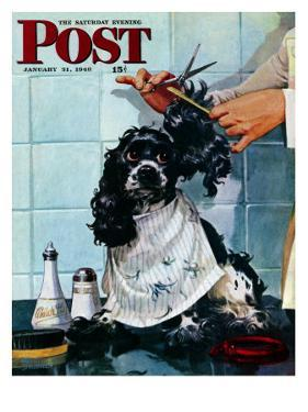 """Butch's Haircut,"" Saturday Evening Post Cover, January 31, 1948 by Albert Staehle"