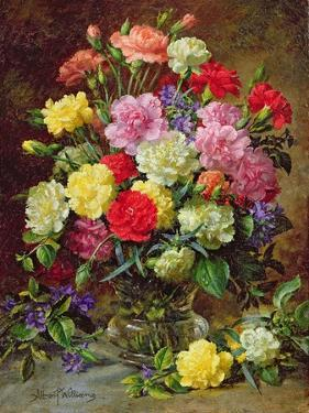 Carnations of Radiant Colours by Albert Williams