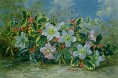 Christmas Roses and Holly by Albert Williams