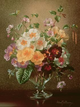 Primulas in a Glass Vase by Albert Williams