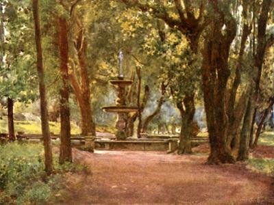 Ilex Avenue and Fountain (Fontana Scura) Villa Borghese
