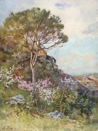 Near Calatafimi