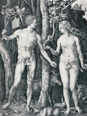 Adam and Eve, 1504 by Albrecht Dürer