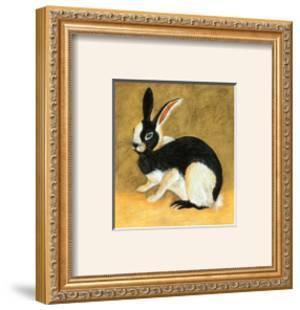 Black and White Bunny II by Albrecht Dürer