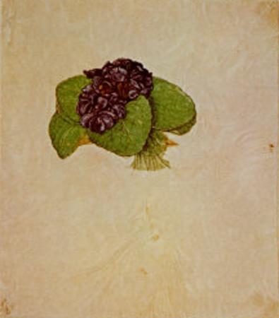 Bouquet of Violets by Albrecht Dürer