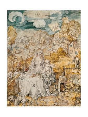 Madonna with a Multitude of Animals. Watercolour. by Albrecht Dürer