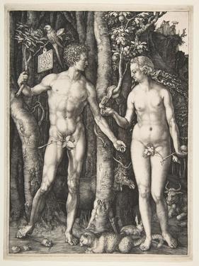Adam and Eve, 1504 by Albrecht Dürer or Duerer