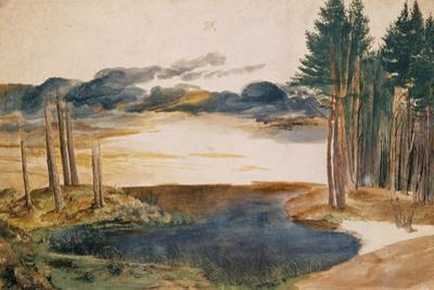 Pond in the Woods (Weiher im Walde). Watercolour and tempera Inv. 5218-167. by Albrecht Dürer