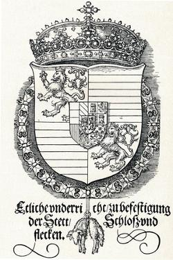 The Coat of Arms of Ferdinand I, King of Hungary and Bohemia, 1527 by Albrecht Dürer