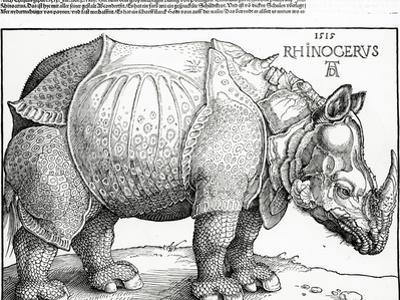 The Rhinoceros, 1515 (Woodcut) by Albrecht Dürer