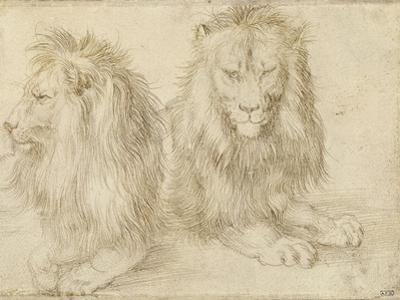 Two Seated Lions, 1521 by Albrecht Dürer