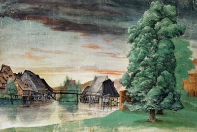 Weidenmuehle-Mill under willows. Watercolour (1497) Inv. 5218-165. by Albrecht Dürer