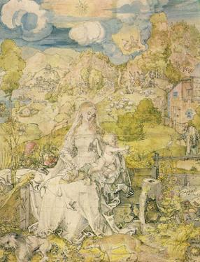 Albrecht Durer (Madonna with the many animals)