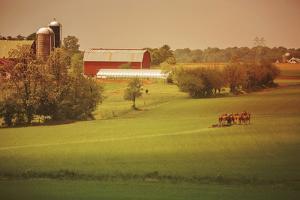 Fall Farm by Aledanda