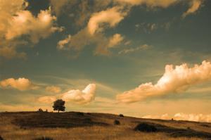 What Beautiful Clouds by Aledanda