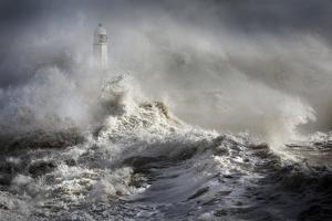 Mayhem at the Lighthouse by Aleks Gjika