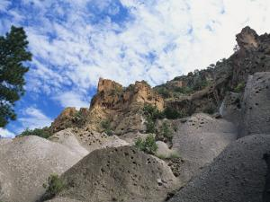 Rock Formations with Pine Tree, Bandelier National Monument, New Mexico, Usa by Alex Adams