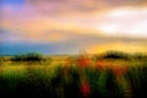 palette photography by Alex Caminker