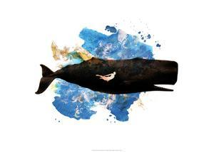 Jonah by Alex Cherry