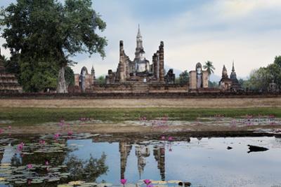 A Sukhothai Era Buddha at Wat Mahathat, Sukhothai Historical Park, Thailand by Alex Robinson
