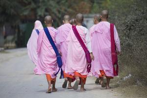 Buddhist Nuns in Traditional Robes, Sagaing, Myanmar (Burma), Southeast Asia by Alex Robinson