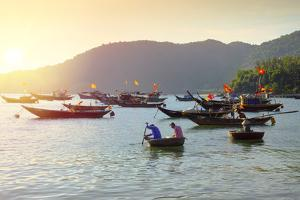 Fishermen in traditional round basket coracle boats on Cham Island, Quang Nam, Vietnam, Indochina, by Alex Robinson