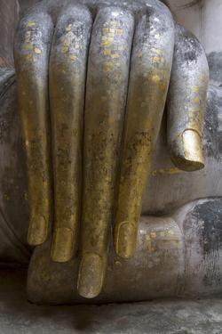 Hand of the Phra Achana Buddha Figure by Alex Robinson