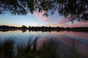A Beautiful Sunset over Pen Ponds in Richmond Park by Alex Saberi