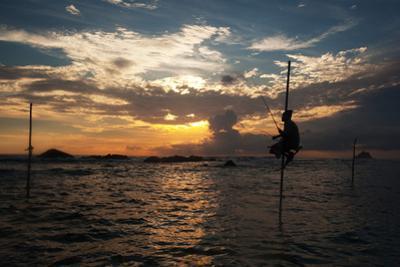 A Stilt Fisherman at Sunset by Alex Saberi