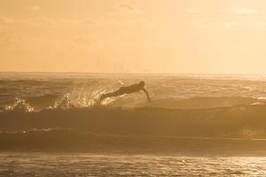 A Surfer Dives over a Wave on Praia Da Joaquina Beach on Florianopolis Island by Alex Saberi