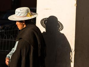 A Traditional Bolivian Woman in the City of Potosi by Alex Saberi